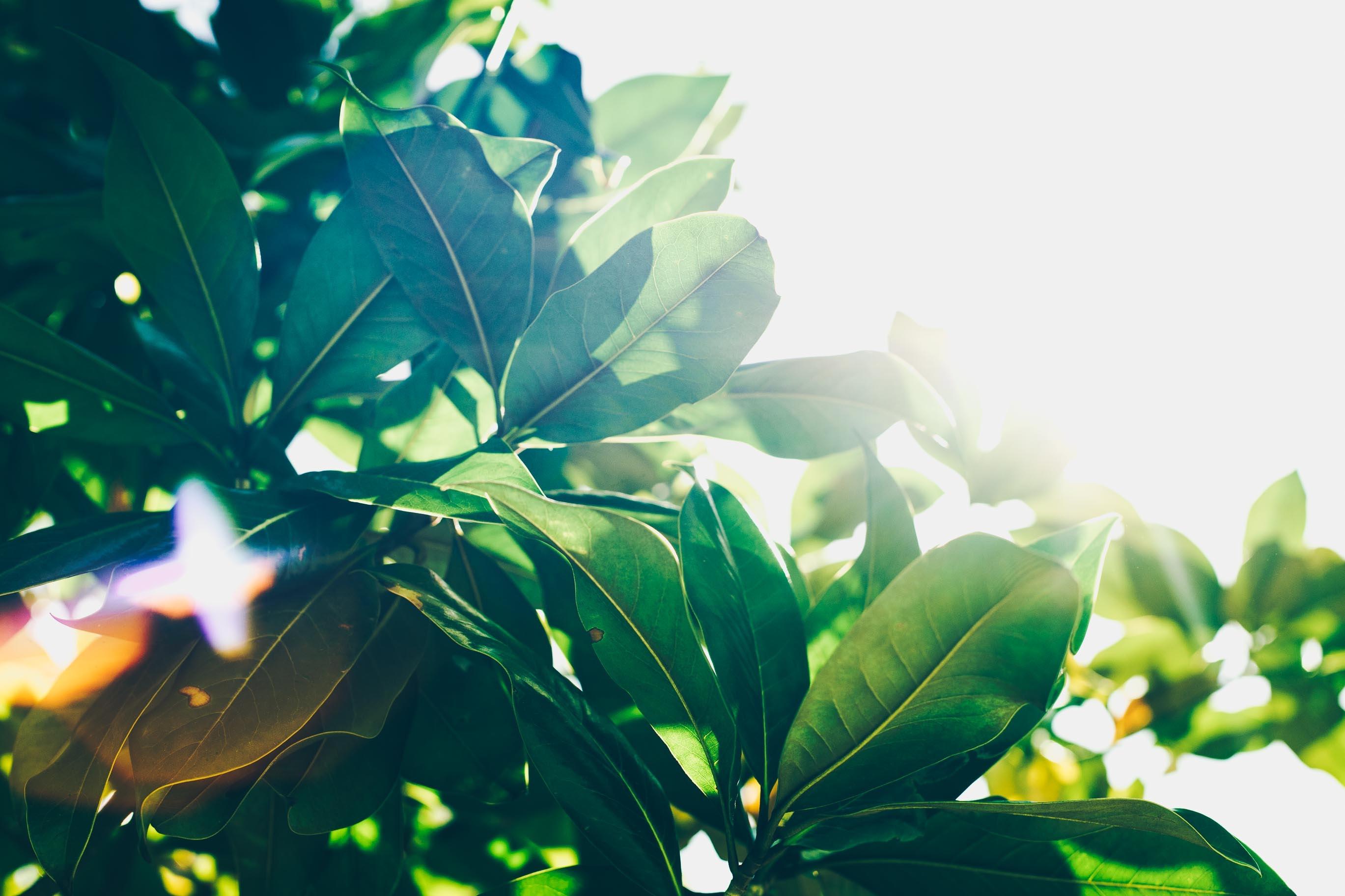 今のあなただからこそ輝けるもの、一緒に見つけよう 〜あの頃の私以上になる〜